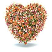 Flower Heart on white — Stock Photo