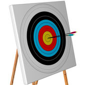 Competition target with arrows — Stock Photo