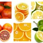 Citrus Collection — Stock Photo #62410645