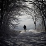 Winter Road — Stock Photo #65902867