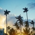 Beautiful sunset at a beach resort in the tropics — Stock Photo #61750553