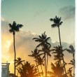 Photo in retro style of beautiful sunset at a beach resort in the tropics — Stock Photo #61750555