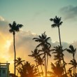 Photo in retro style of beautiful sunset at a beach resort in the tropics — Stock Photo #61750557