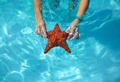 Beautiful colorful starfish in girl hands in blue bright summer water — Stock Photo