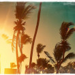 Photo in retro style on beach and palms behind blue summer dark sunset — Photo #62844917