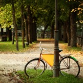 Bicycle in Estonian park, european culture postcard background — Stock Photo