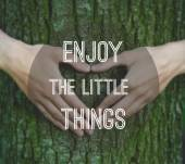 Inspirational motivating quote on tree trunk background — Stock Photo