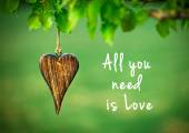All you need is love - inspirational quote — Stock Photo