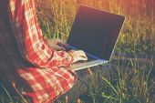 Hands using laptop and typing in summer grass — Stock Photo