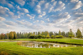 Pond in meadow — Stock Photo