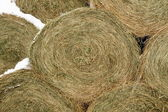 Close on Round Hay Bale in Winter — Foto Stock