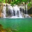 Waterfall in rain forest — Stock Video #57841941