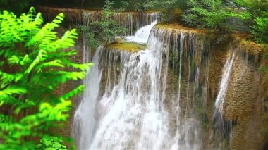 Waterfall in rain forest — Stock Video