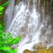 Waterfall in tropical rain forest — Stock Video #68642405