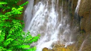 Waterfall in tropical rain forest — Stock Video