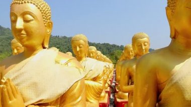Golden Buddha at Buddha Memorial park — Stock Video