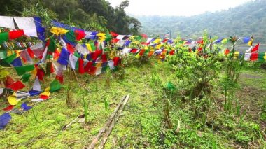 Buddhist prayer flags blowing in the wind — Stock Video