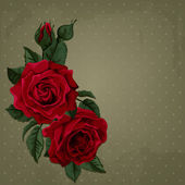 Vintage Card with Roses. Vector Design Element. — Stock vektor