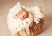 Newborn one week old — Stock Photo