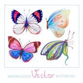 Set of watercolor butterflies — Stock Vector