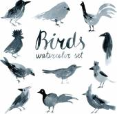 Watercolor set with birds — ストックベクタ