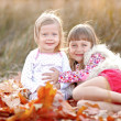 Portrait of two beautiful young sisters in the autumn — Stock Photo #65530341