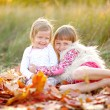 Portrait of two beautiful young sisters in the autumn — Stock Photo #65530369