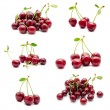 Collection of photos juicy ripe sweet cherry — Stock Photo #72769881