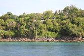 Scenic views of the coastline of Phi Phi Island — Stock Photo