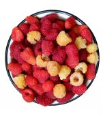 Raspberries on the plate — Stock Photo