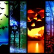 Halloween pumpkin bats and forest -l mystic background — Stock Photo #54093965