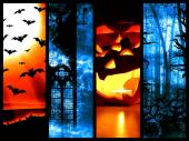 Set of halloween symbols - dark background — Stock Photo