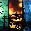 Halloween symbols pumpkin bats forest background — Stock Photo #54120205
