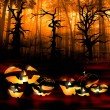Halloween pumpkins on the background of a dark forest — Stock Photo #54291695