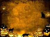 Halloween pumpkins and black cats - brown sepia texture background — Stock Photo