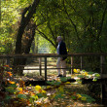 Man on footbridge — Stock Photo #71737403