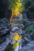 The Early Morning Color Of Watkins Glen State Park — Stock Photo