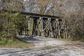 Railroad Trestle In The Ozone Falls State Area — Stock Photo