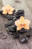 Yellow Moth orchids and black stones on weathered deck — Stock Photo