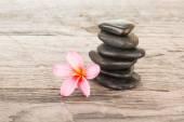 Plumeria Blume und schwarzen Steinen auf verwitterten hölzernen Hintergrund — Stockfoto