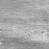 Black and white background old wood texture — Stock Photo