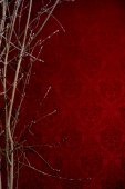 Branch of a tree on a red background with a pattern. Background  — Stock Photo