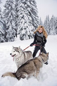 Happy young woman playing with siberian husky dogs in winter forest — Stock Photo