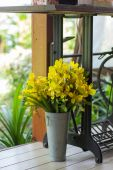 Yellow  posy — Stock Photo