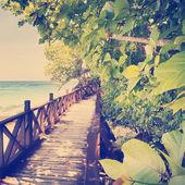 Tropical Walkway — Stock Photo