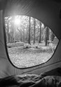 Camping Sunrise Through Tent Black and White — Stockfoto