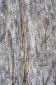 Weathered wood bakcground — Stock Photo
