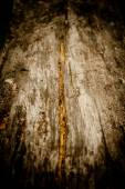 Weathered wood bakcground — Stock Photo
