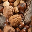 Collection of shelled nuts and nutcracker. — Stock Photo #61395065