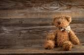 Teddy bear. — Stock Photo